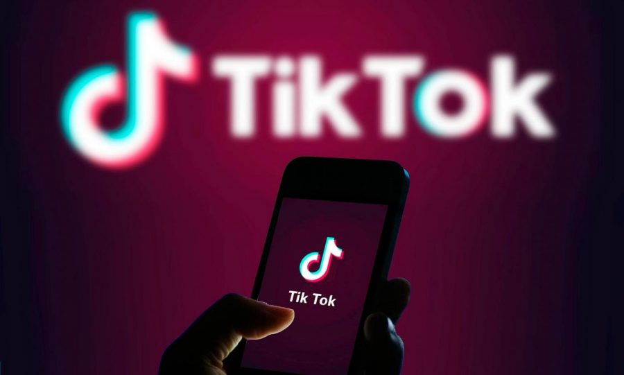 Wildly+popular+TikTok+app+comes+with+security+concerns