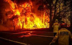 Australia's bush fires will have long term health and environmental consequences