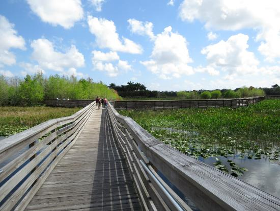 The boardwalk at Green Cay Nature Center makes for a perfect long nature walk.
