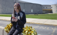 Brandi Levy sued her school district under the First Amendment's free speech clause over her suspension from her school's cheerleading team for a vulgar, off-campus Snapchat post.